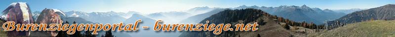 Burenziegenportal - burenziege.net